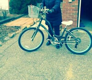 2 MOUNTAIN BIKES STOLEN-MAY BE FOR SALE ON KIJIJI