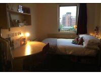 Student Accommodation- Single room with en-Suite and shared kitchen