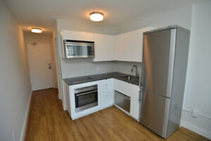 Newly Renovated Bachelors – Bachelor Suites (Queen & Niagara)
