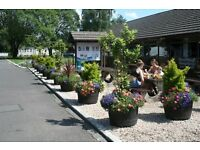 Craig Tara , Sandylands , Turnberry .....NO Rosneath 5 star holiday park..West of Scotland..