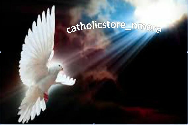 CATHOLICSTORE_NMORE