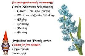 Gardening & Cleaning Service / Gardener