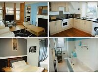 Lovely large 1 bed flat Crosshill