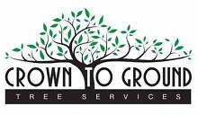 Crown To Ground Tree Services The Hills District Preview