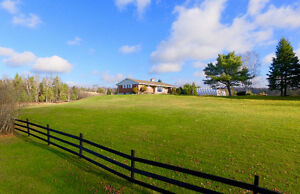 Spectacular 98.98 acres of gorgeous land