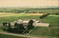 Horse Boarding available at db Farms Co-Operative east of Ottawa