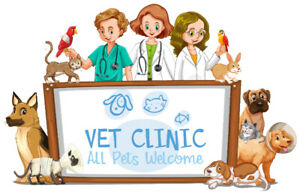 Veterinary Technician Assistant