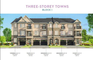 BRAND NEW TOWNHOME FOR RENT in WATERDOWN