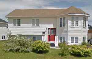 3 Bedroom Home for Rent in Mt Pearl