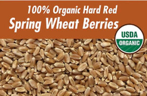 Canadian Certified Organic Hard Red Wheat  20kg bucket  $50.00