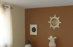 PROFESSIONAL LADY PAINTER, $80/room special!!!!!!!!!!!!!!!!! Kitchener / Waterloo Kitchener Area image 3