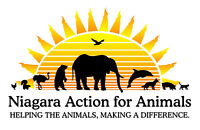 Niagara Action for Animals 1st Spring Yard Sale