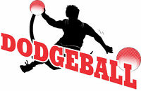 Brantford Adult Dodgeball