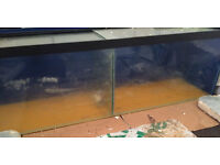 4FT FISH TANK WITH DIVIDER & DRILLED 130 LITRES FOR BREEDING FISH HOUSE SHOP DELIVERY 07544000786