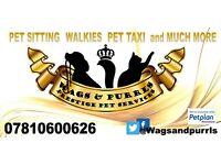 Wags & Purrls Pet Services