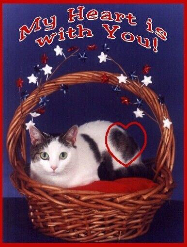 Pet Notecards:Cat Heart