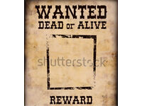 Wanted dead or alive car/van/motorcycles
