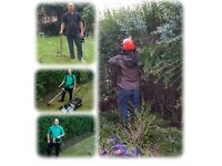 Landscaping Fencing Turfing Slabbing Pruning Hedges Small Tree Works Fence and Shed Painting
