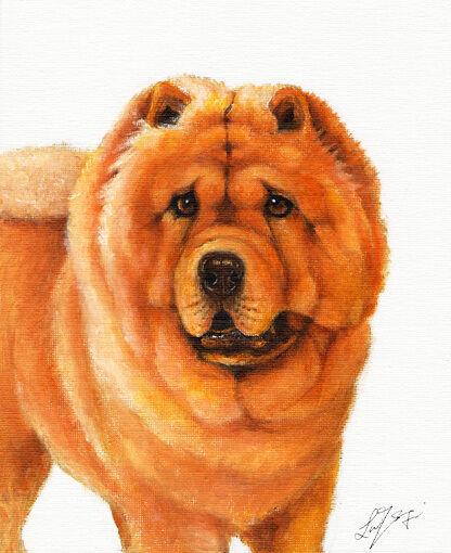 Original Oil DOG Portrait Painting CHOW CHOW Artwork Art