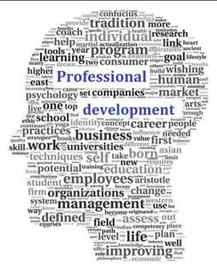 Professional Resume Design & Writing Kitchener / Waterloo Kitchener Area image 1