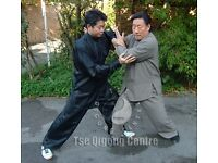 Chen Taijiquan Martial Arts Classes in London with Master Michael Tse ( Tai Chi )
