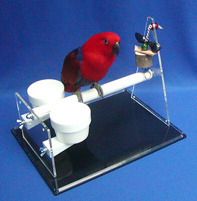 THE BEST TABLE TOP PERCH with 2 cups toy pedicure function for Parrots birds (Best Car Seat Toys)