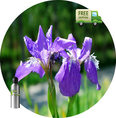 - PURE ORRIS BLOSSOM ABSOLUTE OIL Iris germanica var. florentina NATURAL AYURVEDIC