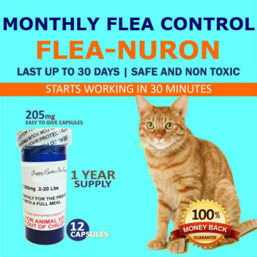 1 Year Supply 12 Capsules Monthly Flea Control For Cats 2-20lbs 205mg
