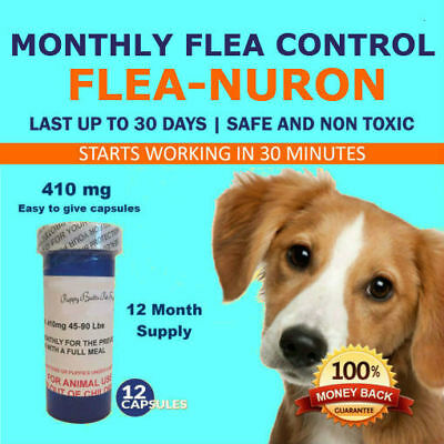 Купить Unbranded - 1 Year Supply MONTHLY Flea Control For Dogs 45-90 Lbs. 410 Mg PB 12 Capsules