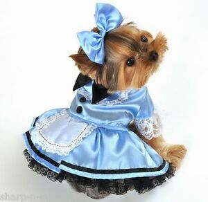 Pet-Dog-Cat-Alice-in-Wonderland-Halloween-Gift-Fancy-Dress-Costume-Outfit-XS-XL