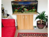 Juwel Rio Fish Tank with accessories