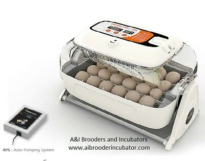 Rcom R Com  King Suro 20 Egg Incubator Fully Automatic  New    Warranty