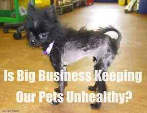 Is Big business Keeping our Pets unhealthy