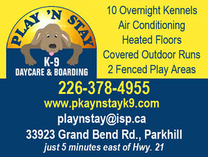 Dog Daycare and Boarding Kennel