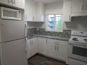 Newly Renovated  Furnished Bachelor Suite in Great Location!