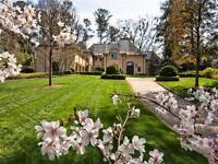 General landscaping lawn, tree maintenance