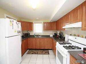 SPACIOUS WALKOUT ONE BEDROOM BASEMENT FOR RENT