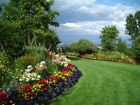 R.T.G Garden service