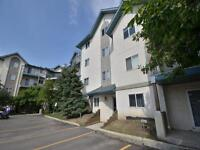 Spacious 2 Bed 2 Bath Condo with In Suite Laundry!