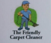 The Friendly Carpet Cleaner...Hardest Working Guy in the Biz!