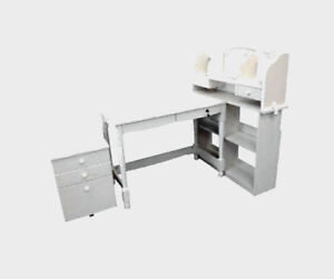 New Arrival ~ Boys and Girls' Study Desk