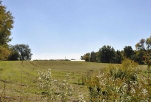 Beautiful 17 Acres Farm in Hamilton for Sale!