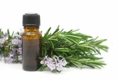 Rosemary Oleoresin Extract Antioxidant 1 Lb