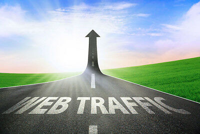 Real 200 000 Web Traffic Worldwide From Search Engine And Social Media