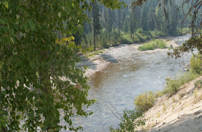 """20 Acre Gold Mining Claim (Placer) """"North Fork Boise River"""", Idaho Elmore County"""