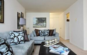 Bachelor on Riverside Dr. - Waterfront - Fitness Room & Pool
