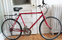 Vintage Hybrid RALEIGH (Specialized Nimbus tires)
