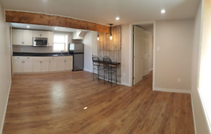 NEWLY RENOVATED Modern Walk-Out Basement Apartment - West End