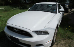 2014 White Mustang - Excellent Condition
