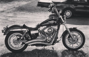 Dyna superglide